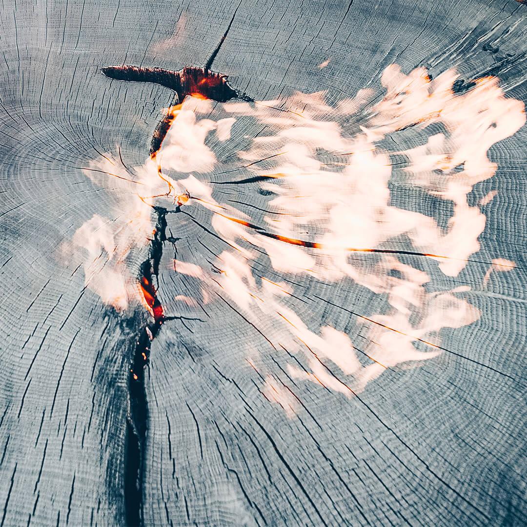 geköhltes Holz